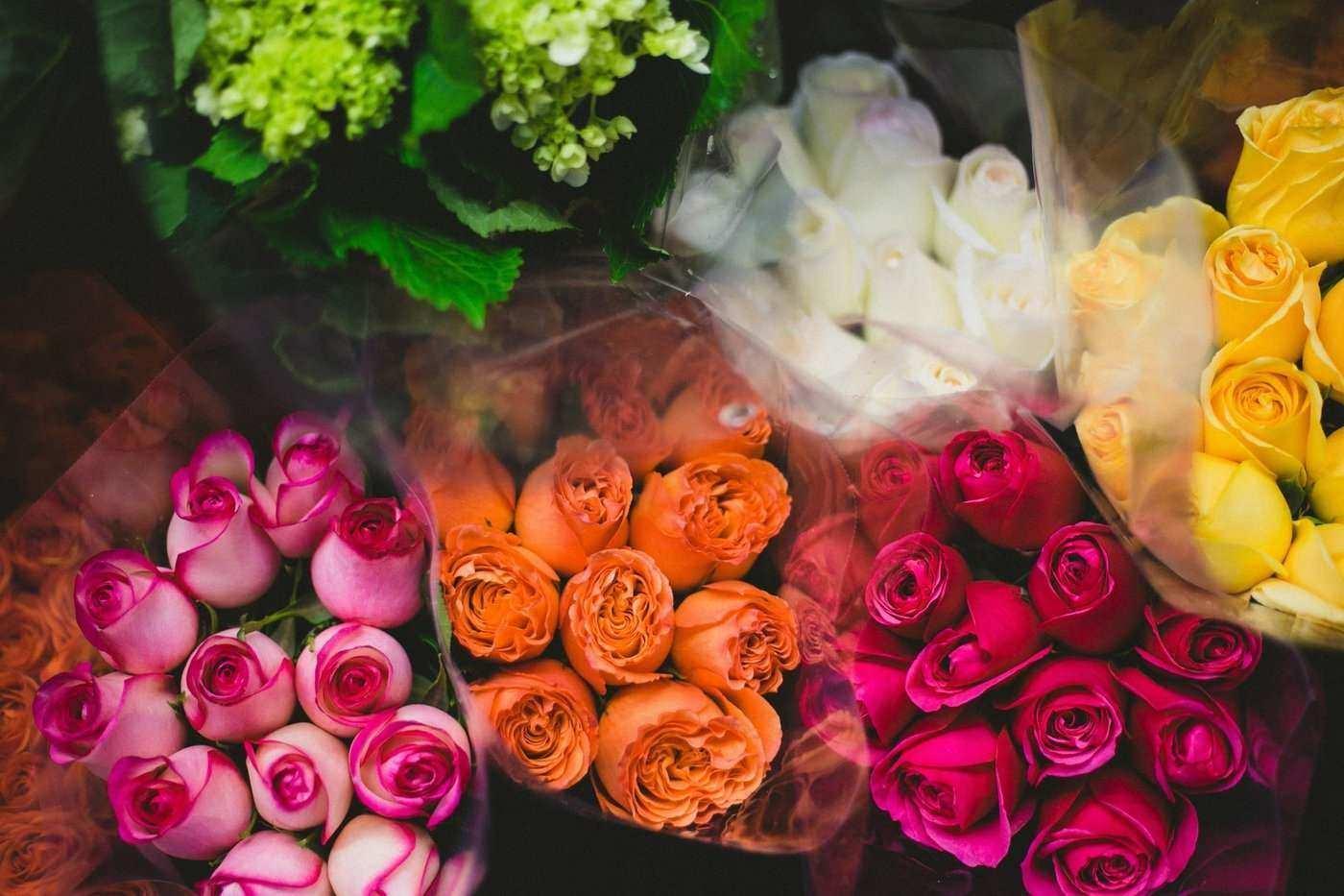 Aussehen blumen wie rosen die ähnlich Künstliche Rosen
